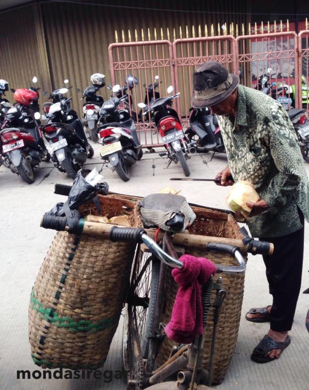 Penjual Kelapa Muda