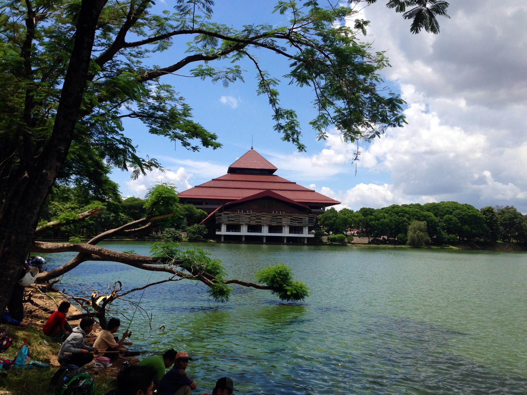 Serenity At Campus Ui Kisahku Buah Matoa Di Kompleks Kampus Universitas Indonesia Ini Ada 6 Danau Yang Dinamai Dengan Nama Tumbuh Tumbuhan Buatan Dangkal Terbukti Dari Airnya