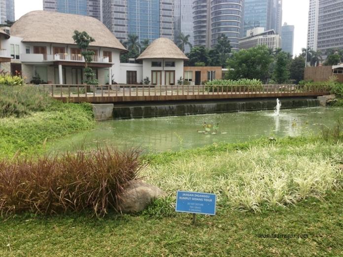 Kolam Taman Kota GBK