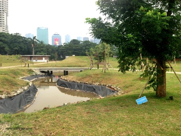 Kolam Trembesi Taman Kota GBK